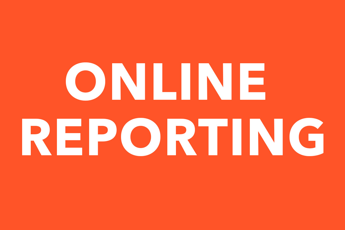 Online-Reporting-Case